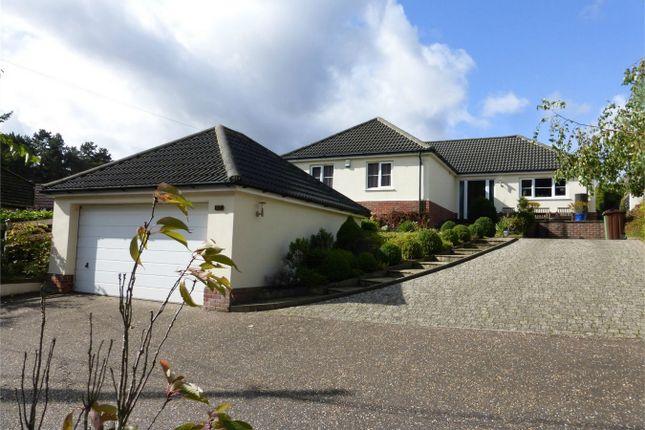 Thumbnail Detached bungalow for sale in Sandy Lane, Taverham, Norwich, Norfolk