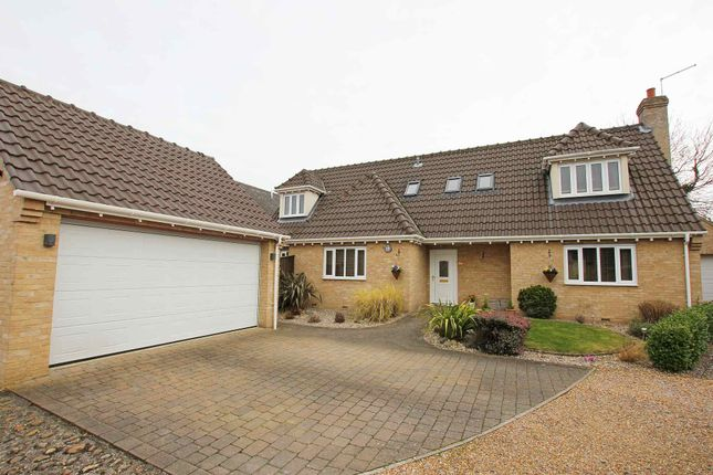 Thumbnail Detached house to rent in Hillside Meadow, Fordham