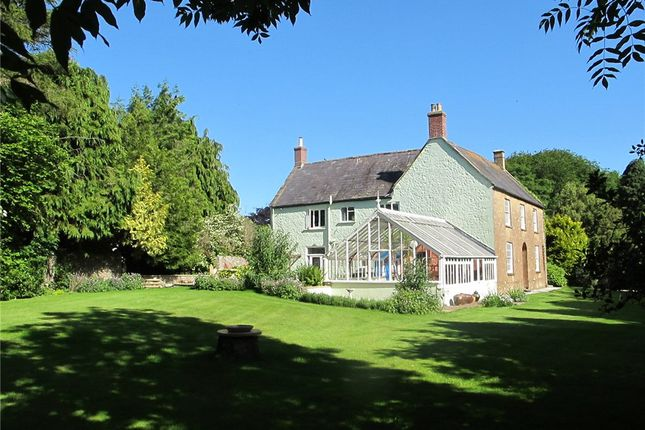 Thumbnail Detached house for sale in Broadwindsor, Beaminster, Dorset