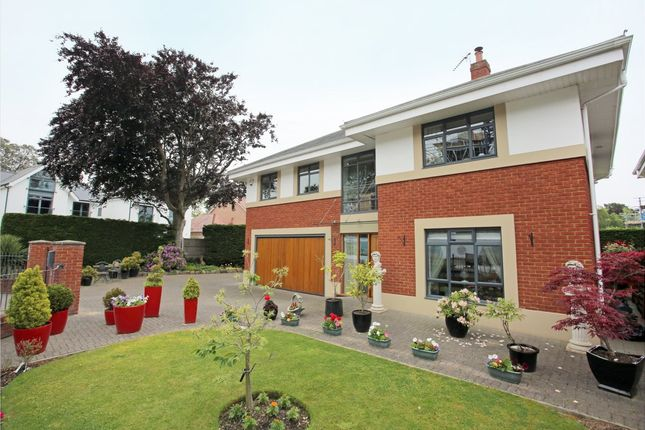 Thumbnail Detached house to rent in Flaghead Road, Canford Cliffs, Poole