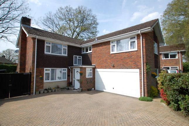 Thumbnail Detached house for sale in Pine Walk, Liss Forest, Hampshire