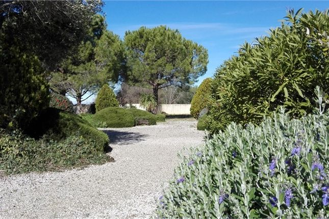 Thumbnail Property for sale in Languedoc-Roussillon, Hérault, Pezenas