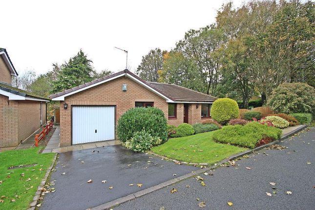 Thumbnail Detached bungalow for sale in Woodside Close, Huncoat, Accrington, Lancashire