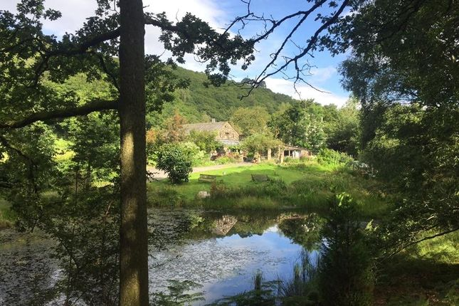 Thumbnail Barn conversion for sale in Jane Meadow, High Dale Park, Satterthwaite, Ulverston