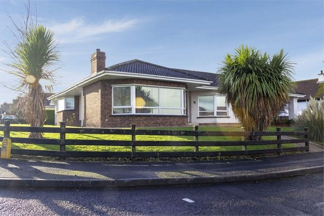 Thumbnail Detached bungalow for sale in Glasvey Drive, Ballykelly, Limavady, County Londonderry