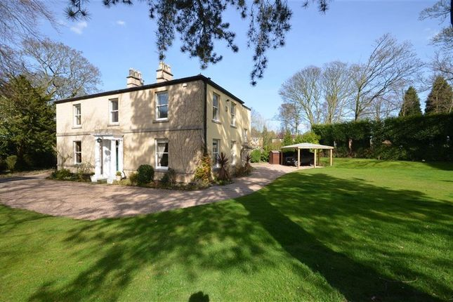 Thumbnail Detached house to rent in Pontefract Road, Ackworth, Pontefract