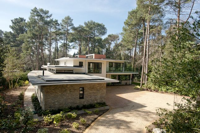 Thumbnail Detached house for sale in Mornish Road, Branksome Park, Poole, Dorset