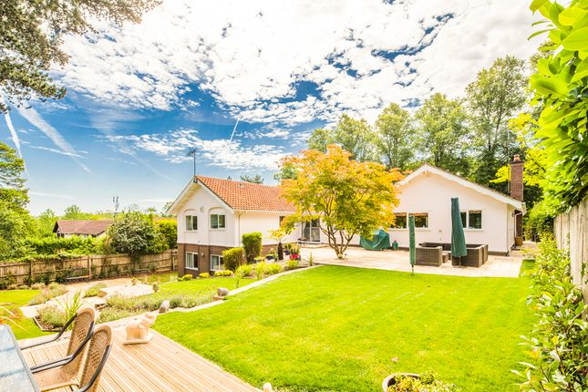 Thumbnail Property for sale in Folia, Pangbourne On Thames