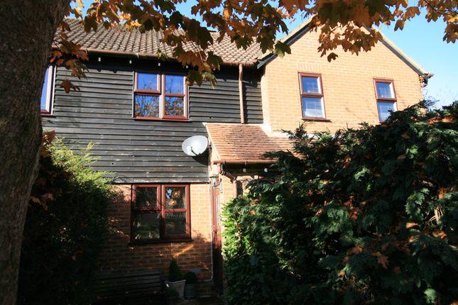 Thumbnail Terraced house to rent in Reedmace Close, Singleton, Ashford, Kent