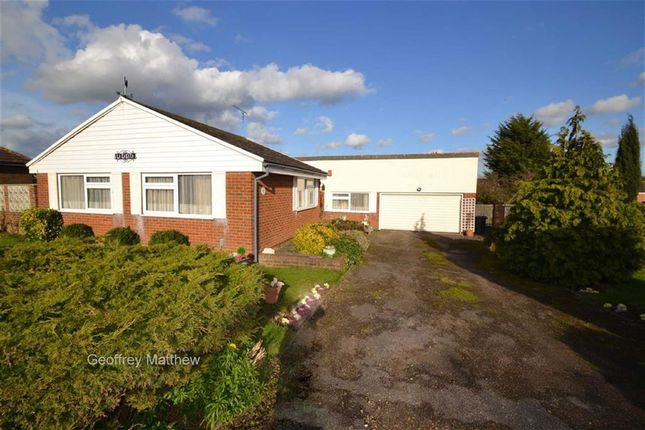 Thumbnail Bungalow for sale in Burnett Park, Harlow, Essex