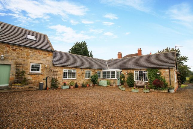 Thumbnail Bungalow for sale in Mill Lane, Stamfordham, Newcastle Upon Tyne