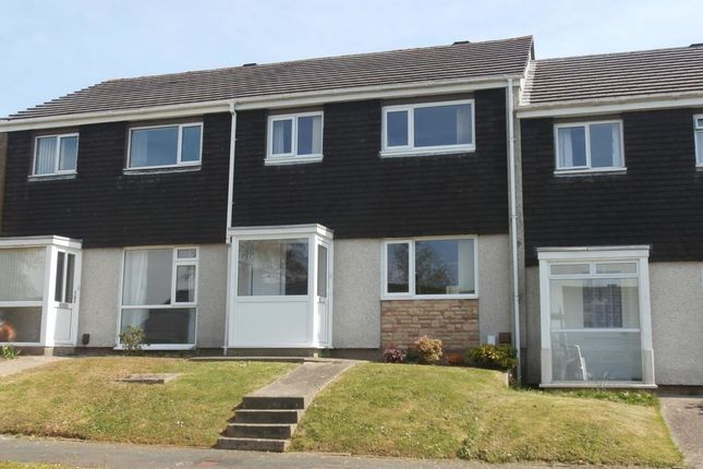 Thumbnail Property to rent in Chichester Way, Newton Abbot