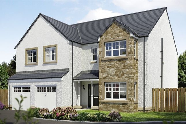 "Thumbnail Detached house for sale in ""The Crichton"" at Capelrig Road, Newton Mearns, Glasgow"