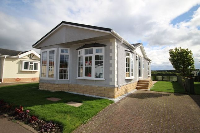 Thumbnail Bungalow for sale in Annsmuir Park Homes, Ladybank, Cupar