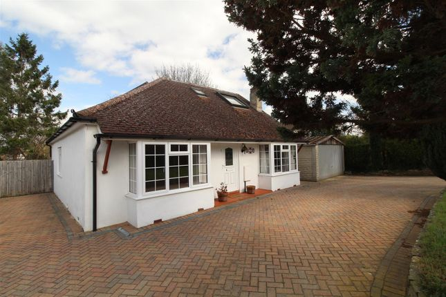 Thumbnail Detached bungalow for sale in Tuckey Grove, Ripley, Woking
