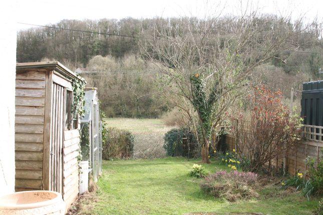 Bampton Seddons of Barnhay, Bampton, Devon EX16