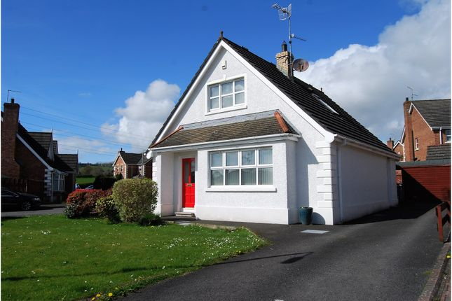 Thumbnail Detached house for sale in Ridge Park, Lisburn