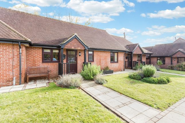 Thumbnail Bungalow to rent in Burton Park Road, Petworth