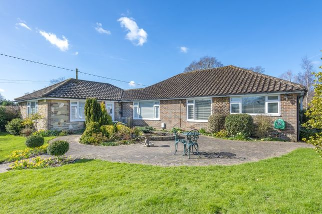Thumbnail Detached bungalow for sale in Littleworth Lane, Partridge Green, Horsham