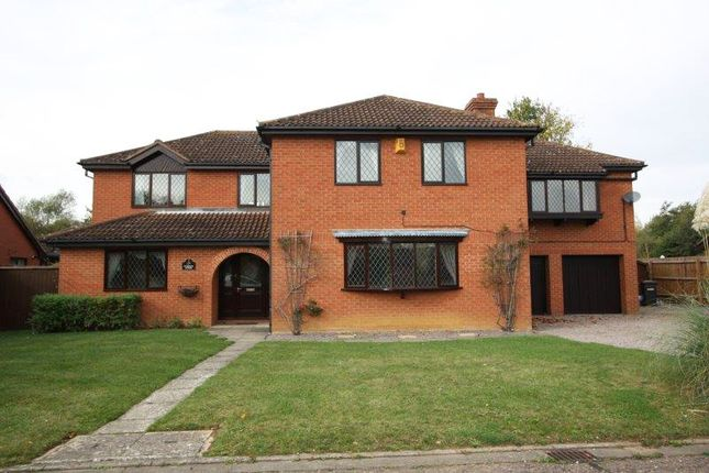 Thumbnail Detached house for sale in The Paddocks, Werrington