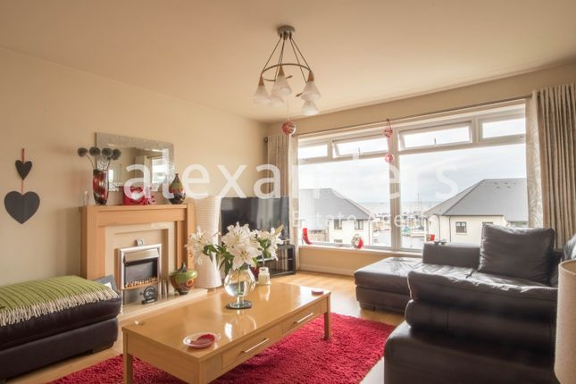 Thumbnail Detached house for sale in Penyranchor, Aberystwyth
