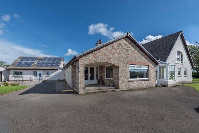 Thumbnail Detached house for sale in Roundyhill, Forfar