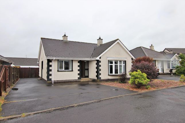 Thumbnail Detached house for sale in Mount Eden, Limavady