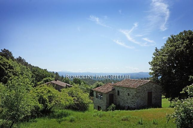 7 bed farmhouse for sale in Anghiari, Tuscany, Italy