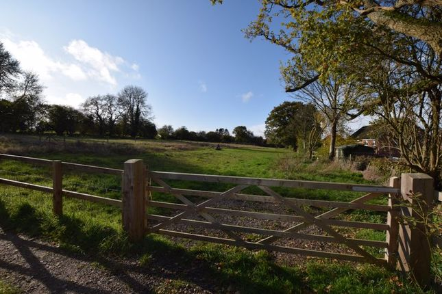 Photo 8 of With 4.58 Acres - Dunsells Lane, Ropley, Hampshire SO24
