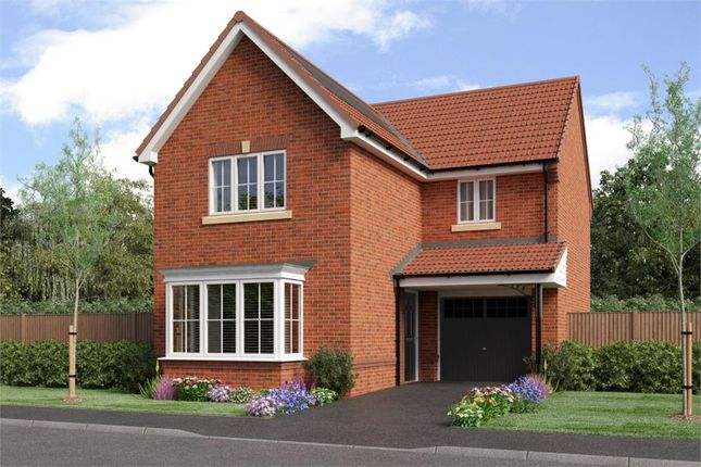 "Thumbnail Detached house for sale in ""Malory"" at Southport Road, Chorley"