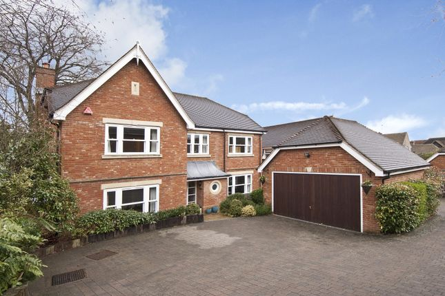 Thumbnail Detached house to rent in Ferndown Close, Guildford, Surrey