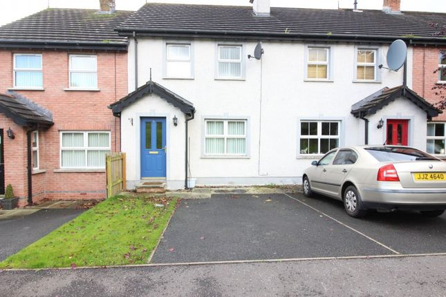 Thumbnail Terraced house to rent in Birch Hill Meadows, Muckamore, Antrim