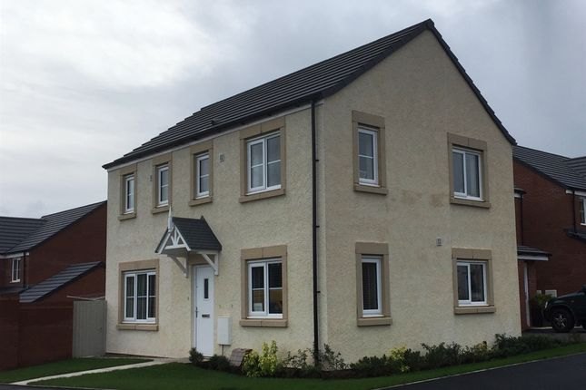 """Thumbnail Detached house for sale in """"The Clayton """" at Cumwhinton Road, Carleton, Carlisle"""