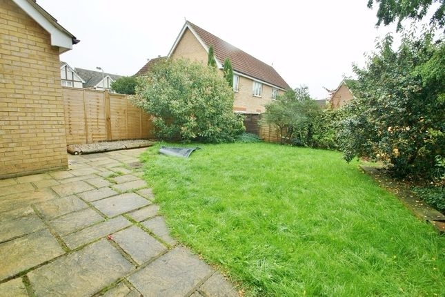 Thumbnail Detached house to rent in Acorn Close, Kingsnorth, Ashford