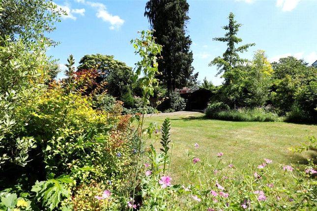 Picture No. 21 of Marryat Road, Wimbledon Village SW19