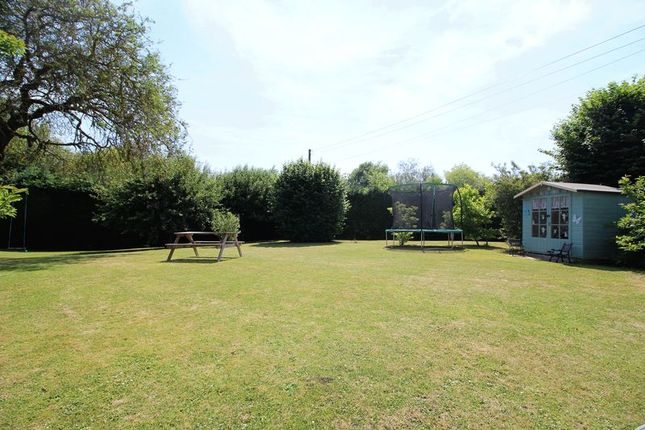 Garden of Donyatt, Ilminster TA19