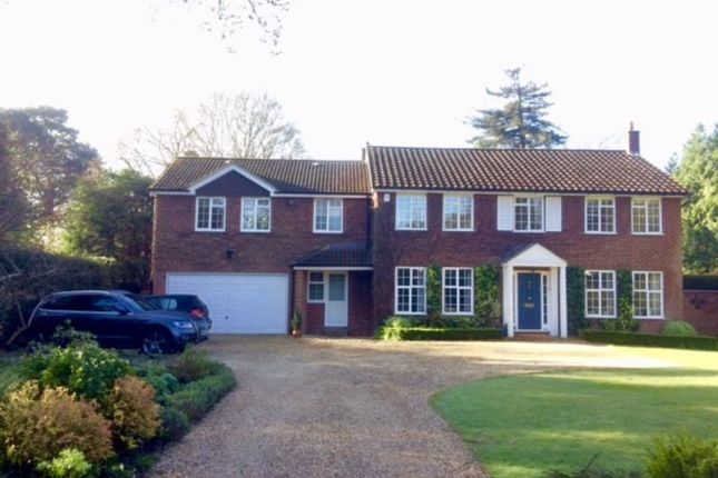 Thumbnail Detached house to rent in Hook Heath Road, Woking, Surrey