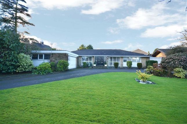 Thumbnail Bungalow for sale in Barnet Road, Arkley, Hertforshire