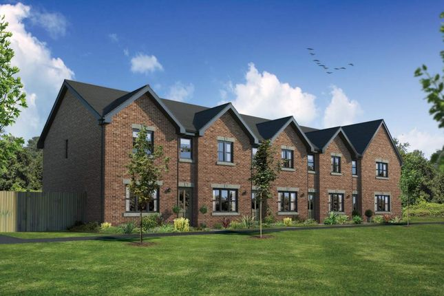 """Terraced house for sale in """"Argyll"""" at Meikle Earnock Road, Hamilton"""