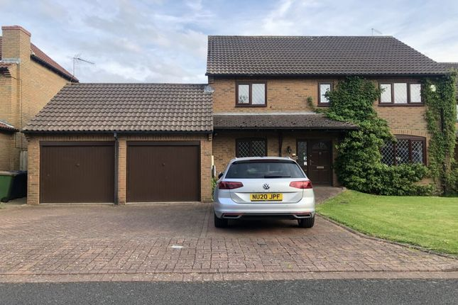 Thumbnail Detached house for sale in Whinchat Tail, Guisborough