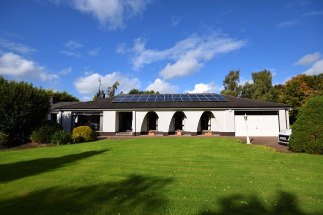 Thumbnail Bungalow for sale in Mullalelish Road, Richhill, Armagh