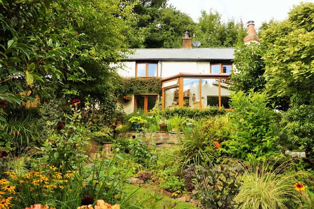 Thumbnail Cottage for sale in Two Waters Foot, Liskeard