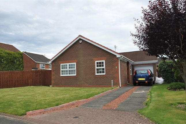 Thumbnail Detached bungalow to rent in Low Haugh, Ponteland, Newcastle.
