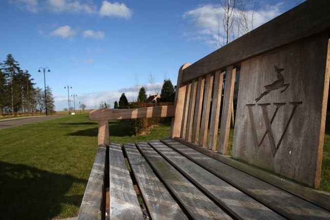 Thumbnail Land for sale in Manorside, Wynyard, Billingham