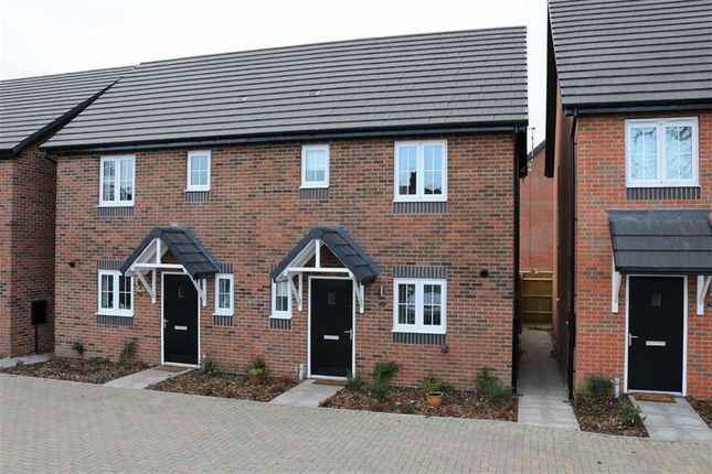 Thumbnail Semi-detached house to rent in Manor Grove, Stafford