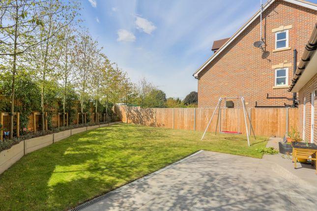 Rear Garden of Watling Street, St. Albans, Hertfordshire AL1