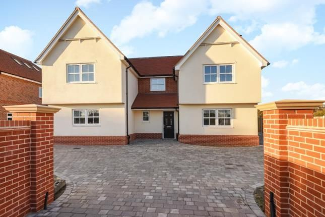 Thumbnail Detached house for sale in Colchester Road, Great Bromley