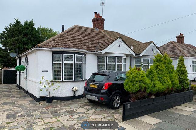 Thumbnail Bungalow to rent in Mainridge Road, Chislehurst