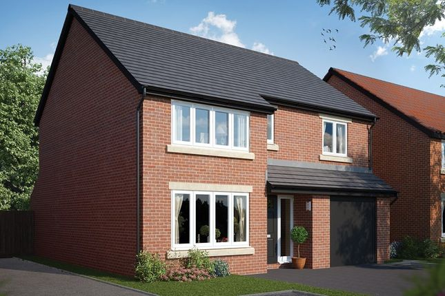 Thumbnail Detached house for sale in Monks Meadow, Llanwern, Newport