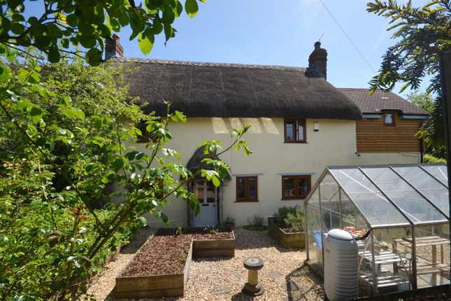 Thumbnail Cottage for sale in Shaftesbury Road, East Knoyle, Salisbury